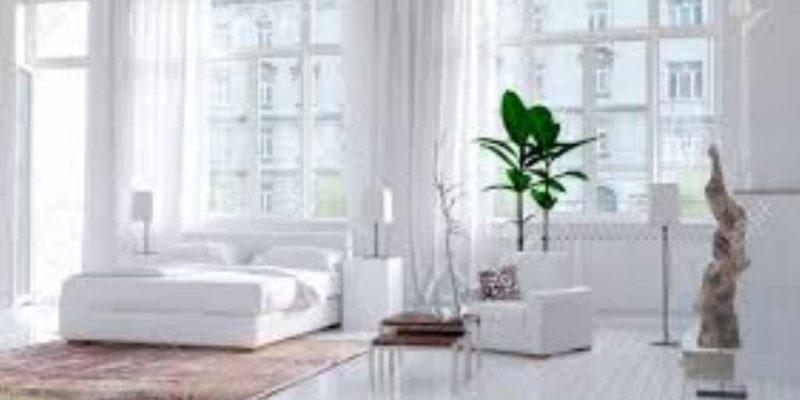 piante-per-camera-da-letto