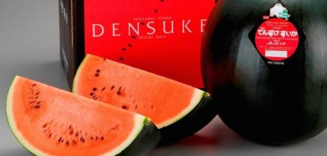 Le angurie densuke: il famoso cocomero nero giapponese